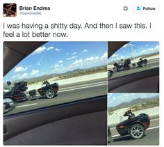 Dogs are still riding motorcycles.