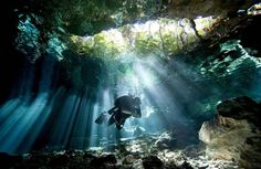 Daily Adventures - 10 Amazing Scuba Diving Images - Daily News Dig (shared via SlingPic)