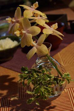 using sake glass
