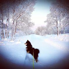 Snow, Mountains, Nature, Travel, Outdoor, Outdoors, Naturaleza, Viajes, Traveling