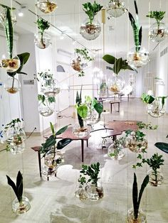 Nueva tendencia decorativa, jardines verticales interiores #decoración…
