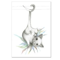 Possum - Part of the Australiana Print Series. The Australiana Series by Winter Avenue Press offers a contemporary spin on Australian Wildlife artwork and is created with pencil and watercolour before. Australian Possum, Australian Animals, Wildlife Decor, Wildlife Art, Wombat, Animal Sketches, Animal Drawings, Possum Magic, Australian Nursery