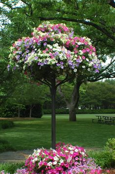 Petunia tree, planter with pots on top?  repinned from Marie de España via Erika Villa - not really sure what I'm doing with Pinterest, trying to find the original source