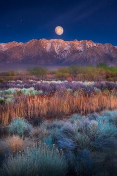 Moon over the Sierras, California | Celso Mollo