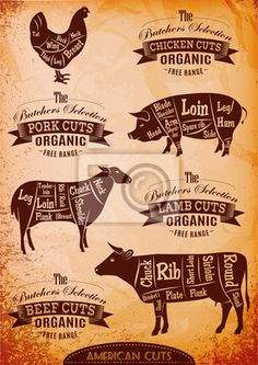 Neu Foto metzgerei logo Konzepte , diagram cut carcasses of chicken, pig, cow, lamb Stock Photo - Concept Restaurant, Meat Restaurant, Restaurant Ideas, Restaurant Branding, Restaurant Design, Carnicerias Ideas, Bar Deco, Lamb Cuts, Meat Shop