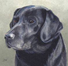 Dog Paintings, Watercolor Paintings, Cute Dog Drawing, Black Labrador, Dog Art, Pet Portraits, Painting Inspiration, Animals And Pets, Cute Dogs