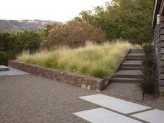 Andrea Cochran Geyserville Residence, California This design reconnects the residence with the surrounding landscape: plantings of drought tolerant native grasses and succulents, CorTen steel Photography: Marion Brenner Succulent Landscaping, Modern Landscaping, Garden Landscaping, Landscaping Ideas, Landscape Stairs, Landscape Architecture Design, Landscape Architects, Desert Landscape, Contemporary Landscape