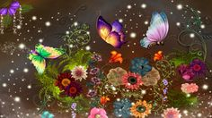 colorful images of butterflies | Colorful Butterfly Wallpaper - Best HD Wallpapers