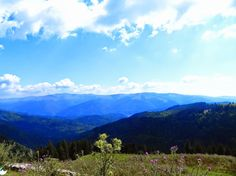padina Amazing Places, Beautiful Places, Romania, Places To See, The Good Place, Mountains, Nature, Travel, Naturaleza