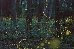 Amazing outdoor lightening...