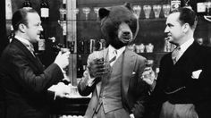 Beer and Bears