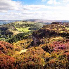 North Yorkshire Moors, England, UK -- @stuart_hodgson » Instagram Profile » Followgram