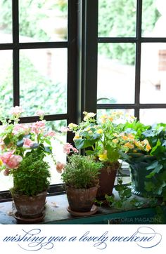 I love this the beauty of the outdoor garden with the colorful flowers in the window.