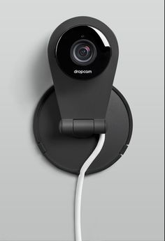 Dropcam: a pup (owners) best friend.