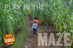 Kruger's Farm Market #Farmalicious #cornmaze