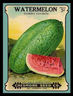 #seedpacket (Now this is what my great-uncle used to call the snake melon. It was big and I couldn't pick one up because it weighed so much. ummmm good)