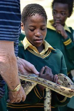 dargle kid with snake Skill Training, Environmental Education, Giving Back, South Africa, Snake, Presentation, Product Launch, School, Kids
