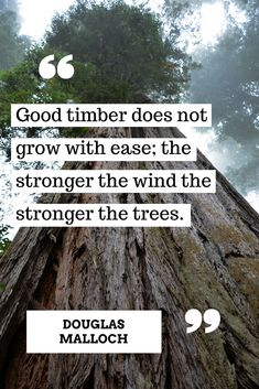 Good Timber Does Not Grow With Ease