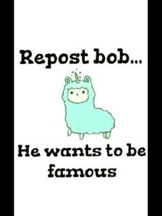 Do it for Bob!!! Do it!!! Bob need to get famous!!