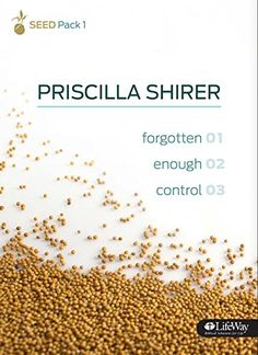 SEED - Bible Study Book 1 by Priscilla Shirer http://www.amazon.com/dp/1415869588/ref=cm_sw_r_pi_dp_2rFixb1XTSW7A