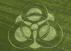 Crop circles | crop circle