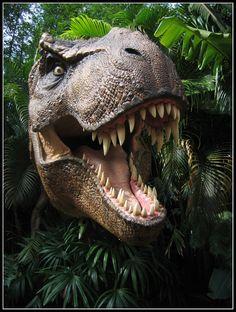 tyrannosaurus rex by NuitariK on deviantART
