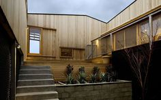 Kerstin Thompson Architects / Ivanhoe House // courtyard, shiplap timber cladding with fine capping.