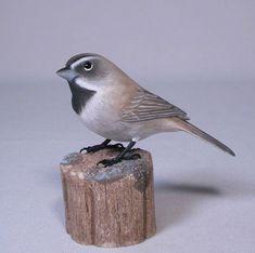 Black-throated Spatz Original Holzschnitzereien Vogel