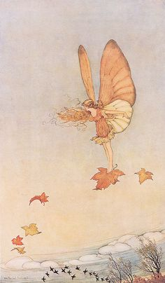 Rare illustration by Ida Rentoul Outhwaite from her first deluxe series, Elves and Fairies, produced in Australia by Thomas Lothian. Her illustrations are her enduring legacy of her love of the Australian bush. Fairy Dust, Fairy Land, Fairy Tales, Old Illustrations, Illustration Art, Autumn Fairy, Kobold, Vintage Fairies, Flower Fairies