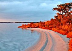 Visit Bethany Beach, Delaware where beach sunrises are beloved by all. The Bethany Beach lifestyle is the ultimate expression of why the Delaware beaches hold a special place in people's hearts. Explore your options here. Fenwick Island Delaware, Great Places, Places To Go, Bethany Beach, Rehoboth Beach, Vacation Spots, Vacation Rentals, Vacation Ideas, Vacation Travel