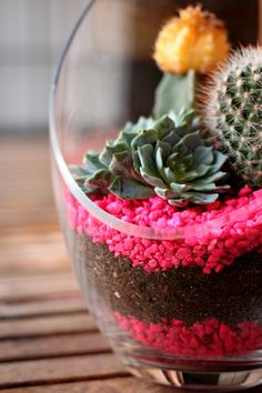 Love This Crazy Life // Easy DIY Cacti