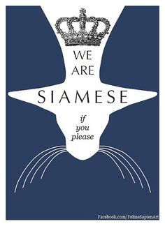 """We are Siamese if you please"" Siamese cat giclee art print by Feline Sapien. Available on Etsy and eBay."