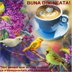 Dimineata... A Blessing, Good Morning, Tableware, Album, Quotes, Dune, Buen Dia, Quotations, Dinnerware