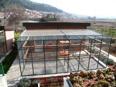 Pigeon loft with very large Avery, Your birds would love it! 2feef19d8ffba3fa5fb1d303b283306b.jpg (736×552)
