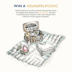 Sunspel picnic competition illustration