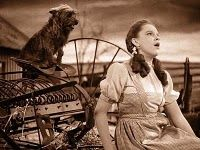 """Judy Garland and Toto in The Wizard of Oz ~ Dorothy singing: """"Somewhere Over The Rainbow"""". Judy Garland, Old Movies, Great Movies, Awesome Movies, Movies Showing, Movies And Tv Shows, Wizard Of Oz 1939, Wizard Of Oz Movie, Cult"""