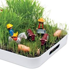 """The 1/100th Acre Farm--help kids plant grass in a tray, and once it's grown, let 'em loose with small toys to play on their """"farm""""."""