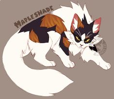 Mapleshade by Dominos-Cat on DeviantArt