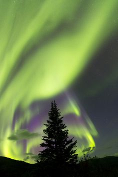 Eerie but beautiful at the same time. Introducing the Northern Lights.