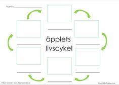 Det här dokumentet är för eleverna att rita och skriva om äpplets livscykel.