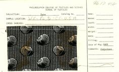 Chestnut print    Cotton    Eddystone    1883