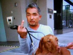 Unfortunately, the public's most beloved source of information – The Dog Whisperer by Cesar Millan - advocates a theory in direct opposition to this progress. For the last eight years, Cesar Millan has put forth an abusive training theory predicated on di Training Your Puppy, Dog Training Tips, Cesar Millan Puppy Training, Potty Training, Dog Whisperer, Education Canine, Puppy Biting, Dog Pee, Star Citizen