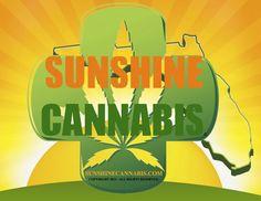 sunshine cannabis marijuana florida hbtv hemp beach tv