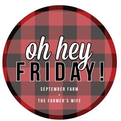 5 on Friday! Blogging ideas for every Friday happenings!