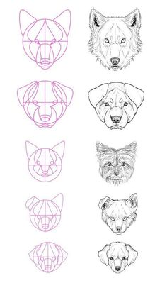 art desenho An exquisite fuck-ton of canine references. To see the text of the larger images, you gotta reverse-image search em. [From various sources] Drawing Lessons, Drawing Techniques, Drawing Tips, Drawing Reference, Drawing Sketches, Painting & Drawing, Dog Drawing Tutorial, Sketching, Design Reference