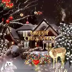 Merry Christmas Wallpaper, Christmas Scenery, Elegant Christmas Decor, Merry Christmas Quotes, Christmas Music, Christmas Pictures, Christmas Greetings, Christmas Time, Christmas Crafts