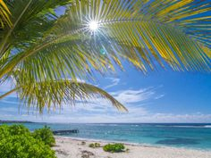 Beach front Land - Spotts | Other Cayman Islands Any Cities In The Cayman Islands Land Home for Sales Details
