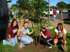 Replant is one of the largest student-run, enviromental service projects in the nation.