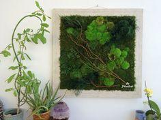 34 x 34 planta de pintura con plantas reales