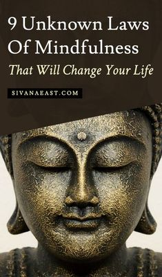 9 Unknown Laws Of Mindfulness That Will Change Your Life by roamingyoginatalie Read Mindfulness Exercises, Mindfulness Activities, Mindfulness Practice, Mindfulness Techniques, Mindfulness Benefits, Yoga Benefits, Meditation For Beginners, Daily Meditation, Buddhism For Beginners